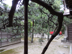 砂丘館の中庭