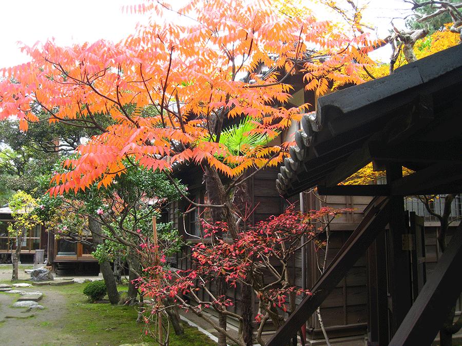 garden_a03