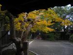 garden_a04