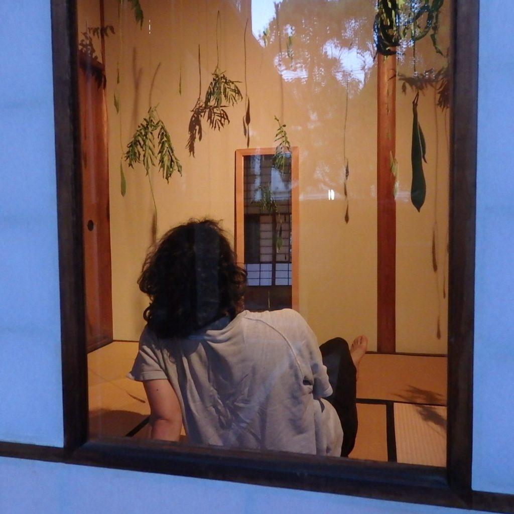 平原慎太郎 おとずれのにわ 動画配信(8/30まで公開します)→【延長】9/13日まで公開します【公開終了】の画像