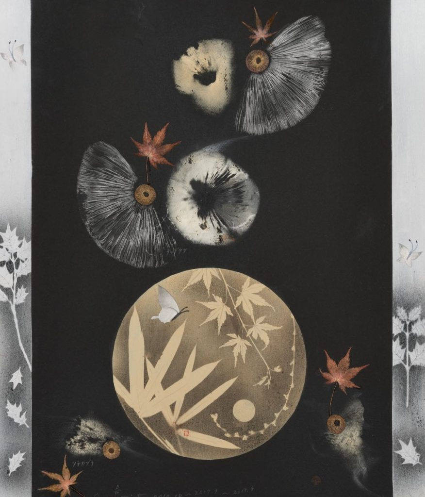 渡辺隆次胞子紋の世界展の画像